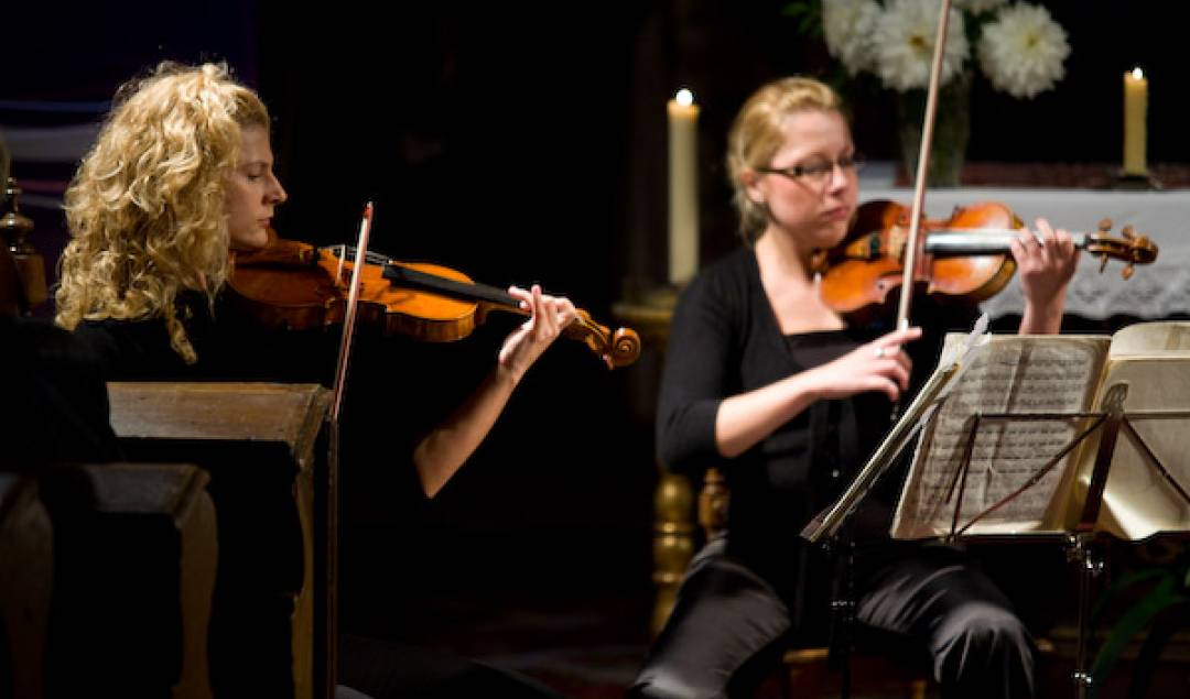 Festival Lípa Musica 2008 - Pavel Haas Quartet